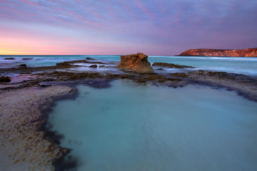 Tidepool Dawn Photograph
