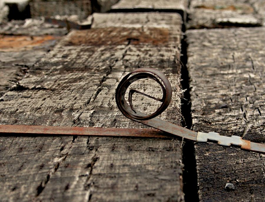 Ties Photograph