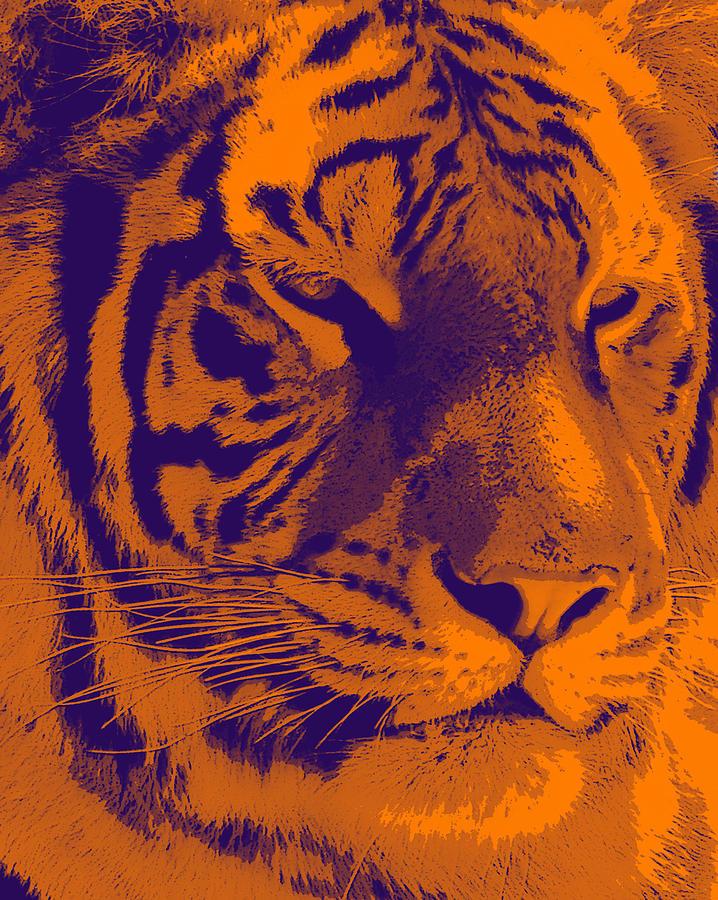 Tiger Photograph - Tiger 2 by Jesus Nicolas Castanon