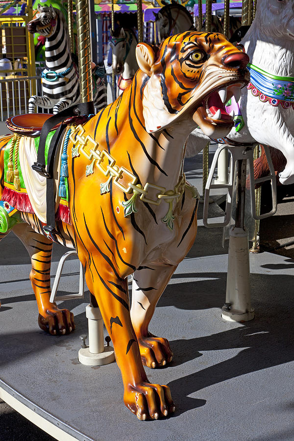 Tiger Carousel Ride Photograph  - Tiger Carousel Ride Fine Art Print