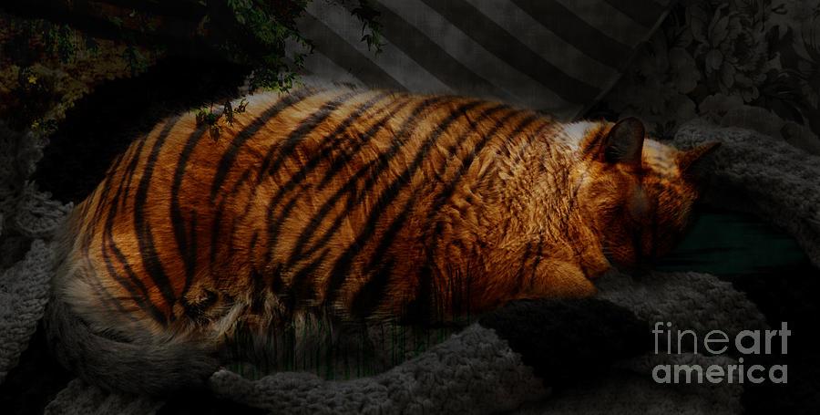 Tiger Dreams Digital Art
