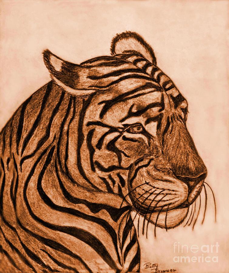 Tiger IIi Drawing