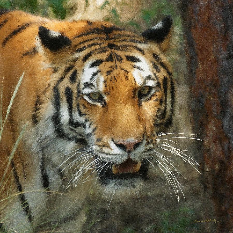 Tiger Painterly Square Format  Digital Art
