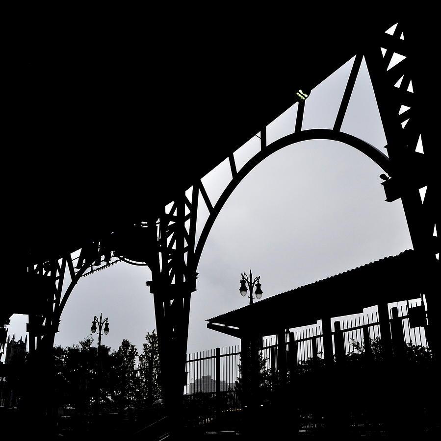 Tiger Stadium Silhouette Photograph