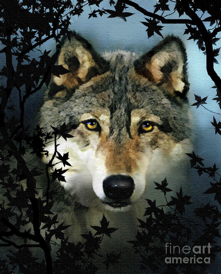 Timber Wolf Painting  - Timber Wolf Fine Art Print