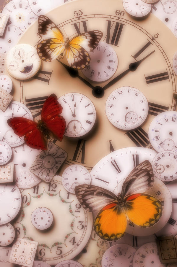 Time Flies Photograph  - Time Flies Fine Art Print