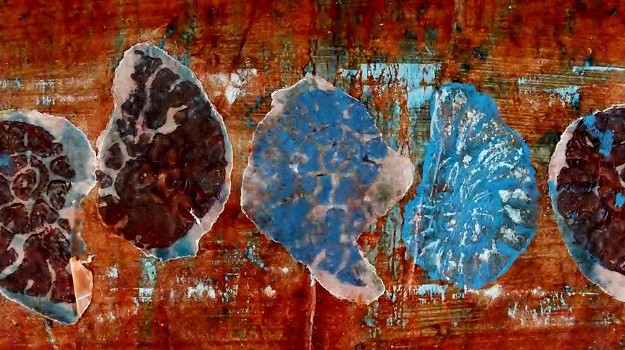 Fossils Mixed Media - Time Line by Emma Manners