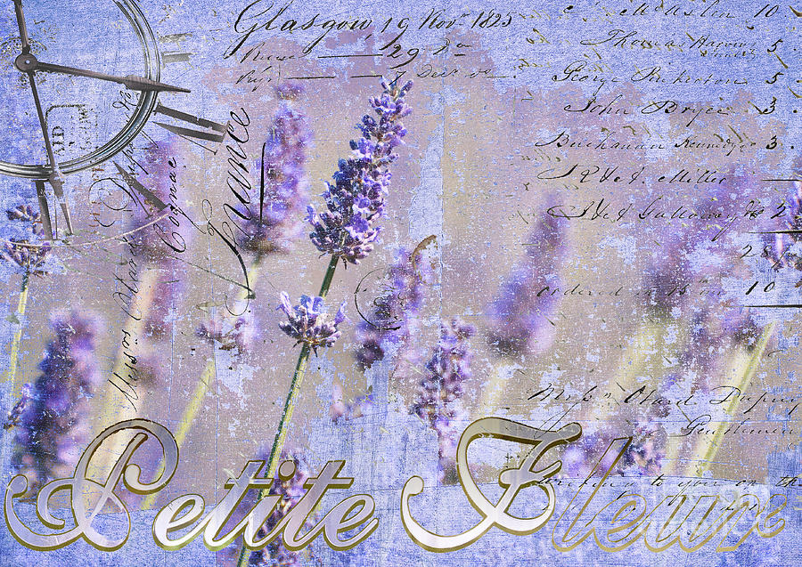 Timeless Lavender Mixed Media  - Timeless Lavender Fine Art Print