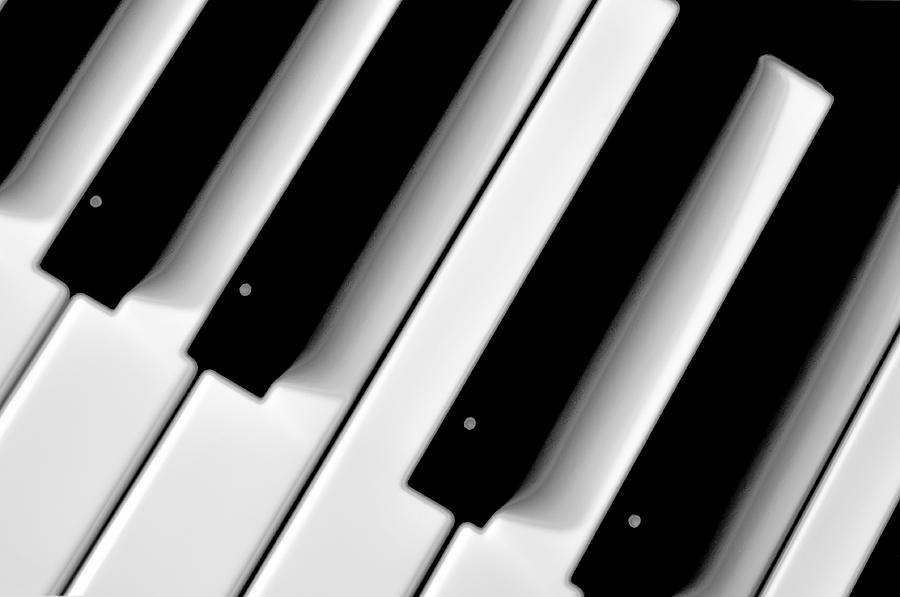 Tinkling The Ivories Photograph  - Tinkling The Ivories Fine Art Print