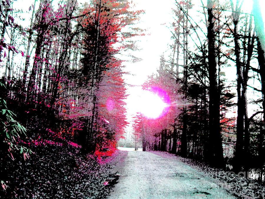 Tinted Drive Photograph