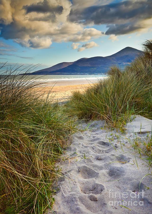 Beach Photograph - To The Beach by Derek Smyth
