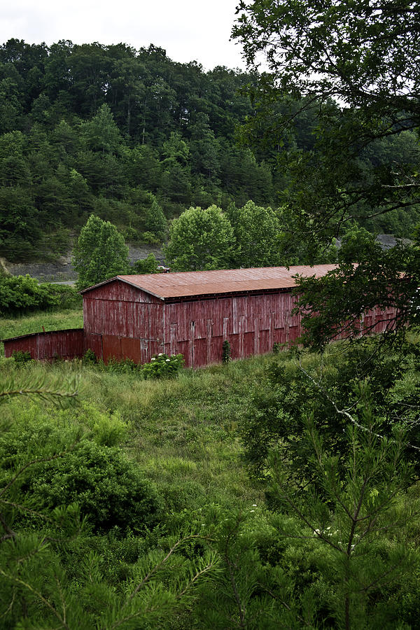 Tobacco Barn From Afar Photograph  - Tobacco Barn From Afar Fine Art Print