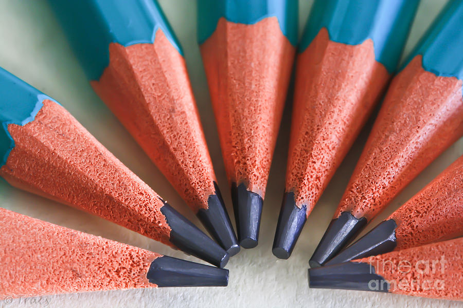 Pencils Photograph - Together We Stand by Tracy  Hall