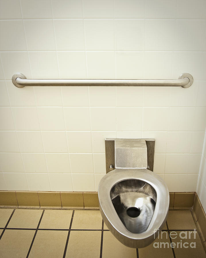 Accessibility Photograph - Toilet In A Public Restroom by Thom Gourley/Flatbread Images, LLC