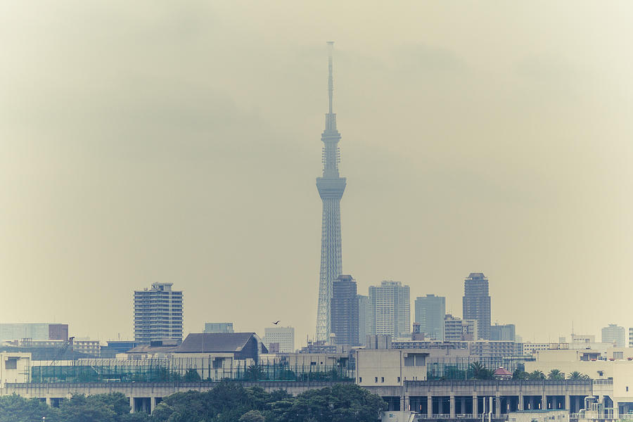 Horizontal Photograph - Tokyo Skytree by Gregory Ferguson