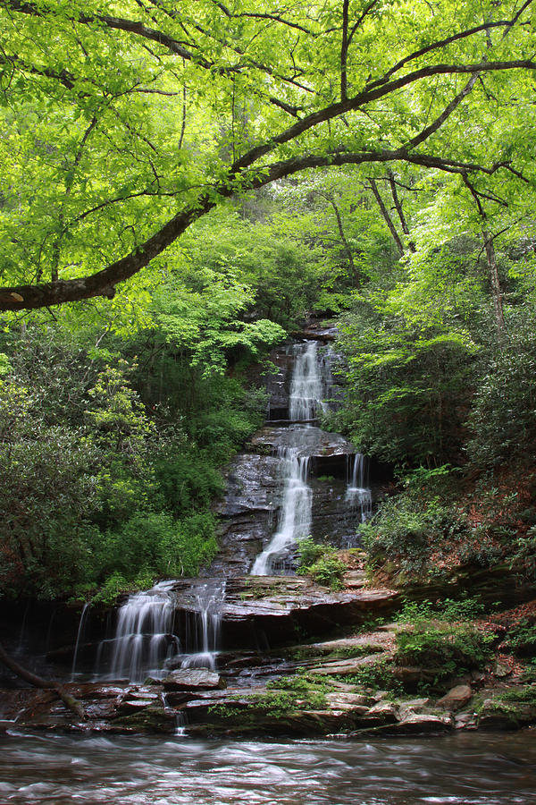 Tom branch falls gsmnp by shari jardina for Jardina
