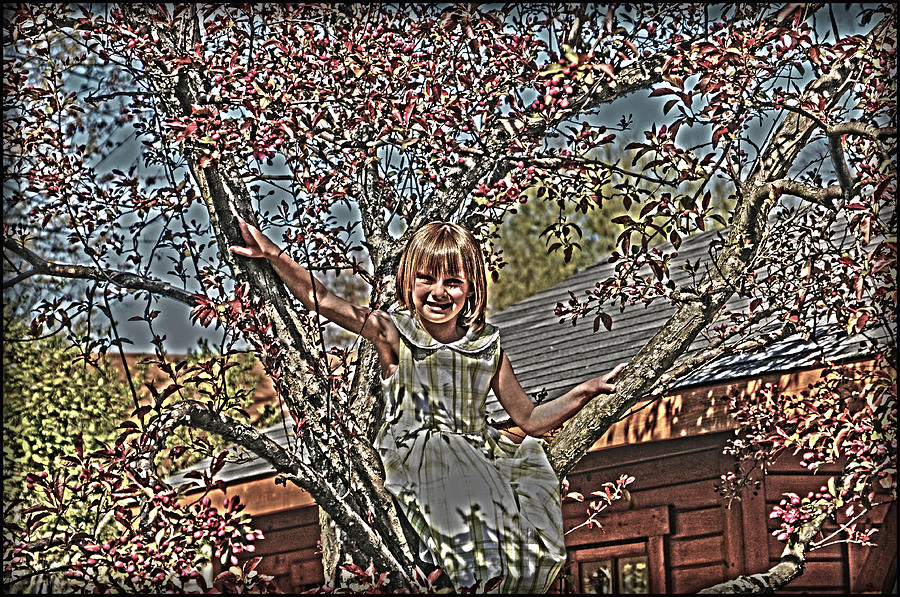 Tomboy In The Tree Photograph  - Tomboy In The Tree Fine Art Print