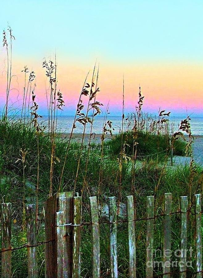 Topsail Island Dunes And Sand Fence Photograph