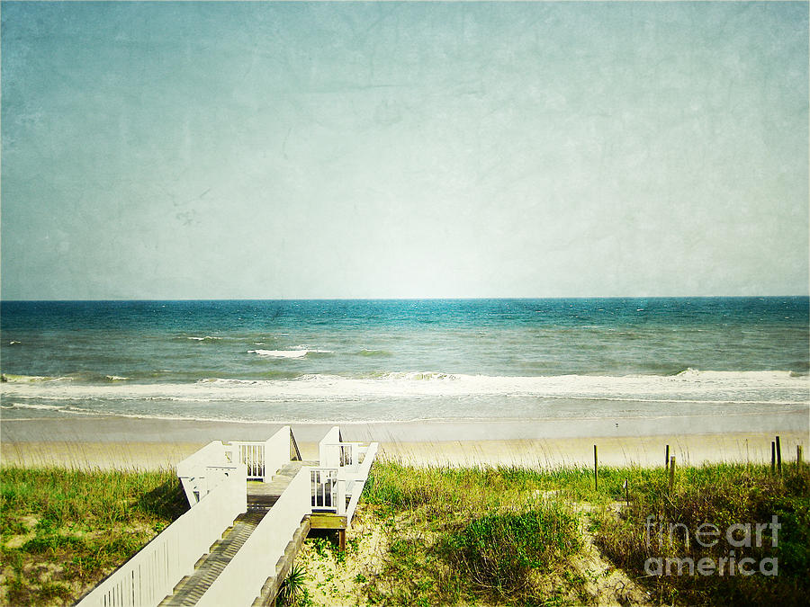 Topsail Perfection Photograph  - Topsail Perfection Fine Art Print