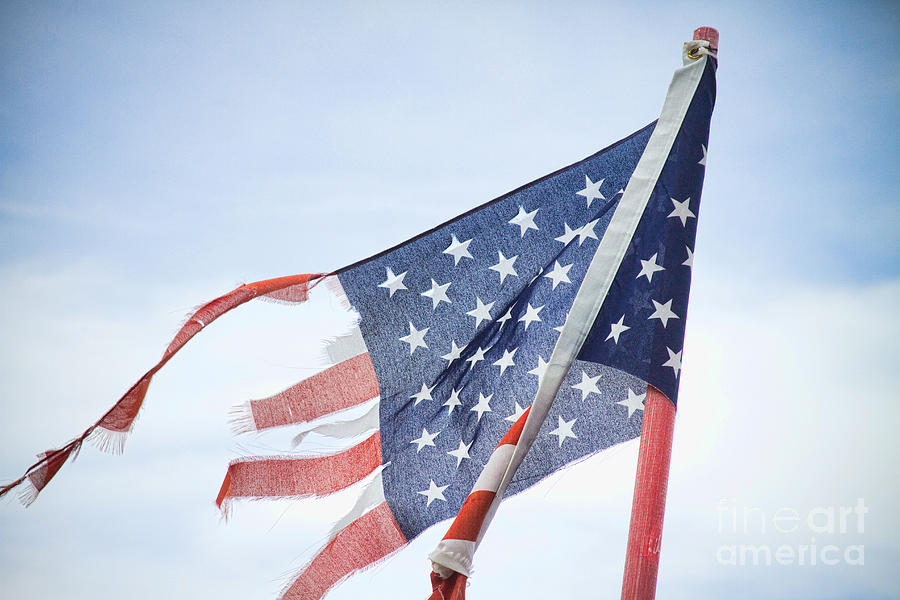 Torn American Flag Photograph  - Torn American Flag Fine Art Print
