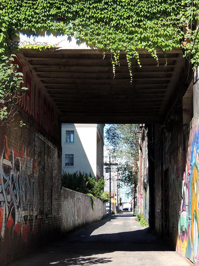 Toronto Alley Underpass Photograph