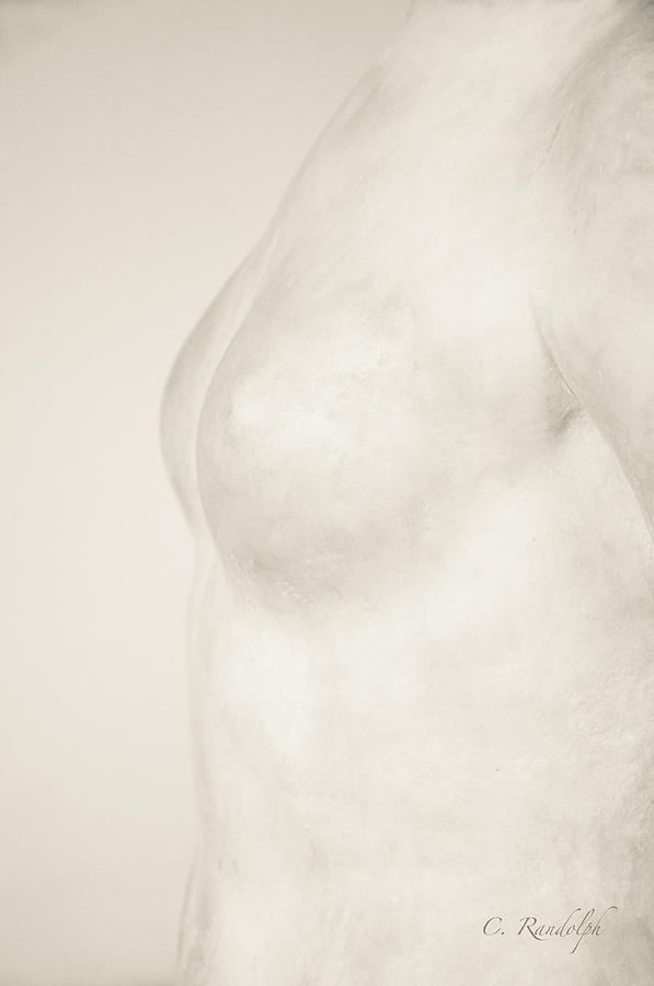 Torso Suggested Photograph  - Torso Suggested Fine Art Print