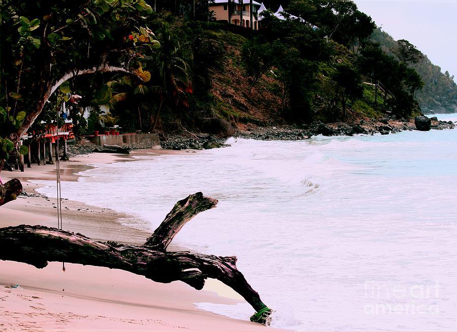 Tortola Bvi Photograph