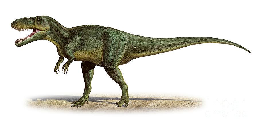 Horizontal Digital Art - Torvosaurus Tanneri, A Prehistoric Era by Sergey Krasovskiy