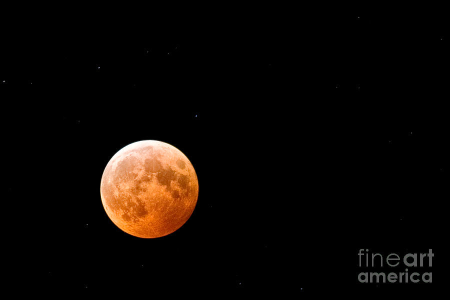 Total Lunar Eclipse Photograph  - Total Lunar Eclipse Fine Art Print