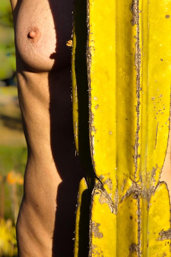 Cactus Photograph - Totem by Kate McKenna