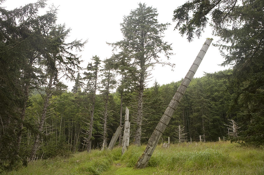 Queen Charlotte Islands Photograph - Totem Poles Stand In A Deserted Village by Taylor S. Kennedy