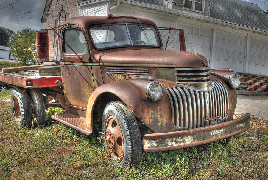 Tough Old Workhorse Photograph  - Tough Old Workhorse Fine Art Print