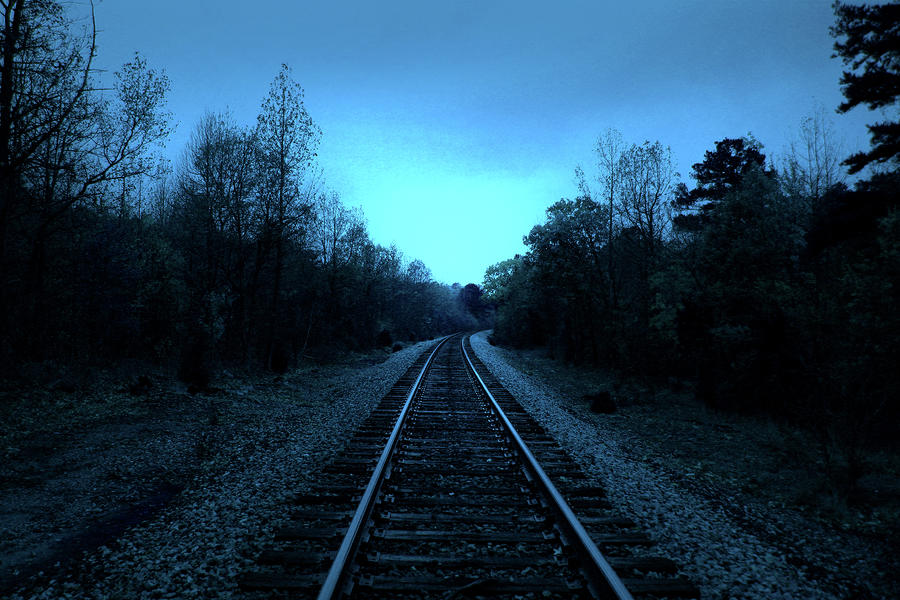 Tracks Of Dawn Photograph