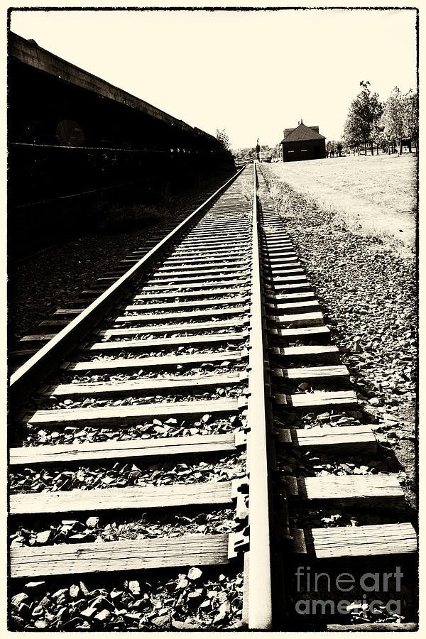 Train Photograph - Tracks Of Our Ancestors by Leslie Leda