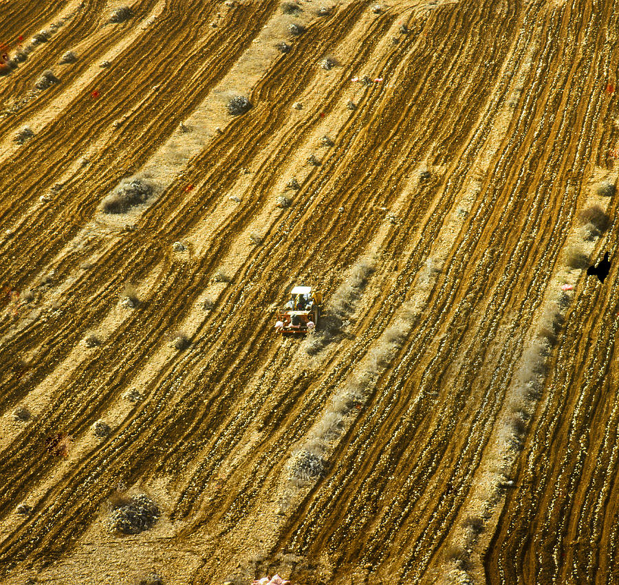 Tractor Cultivating Field Photograph