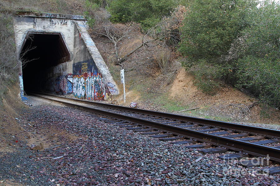 Train Tunnel At The Muir Trestle In Martinez California . 7d10228 Photograph