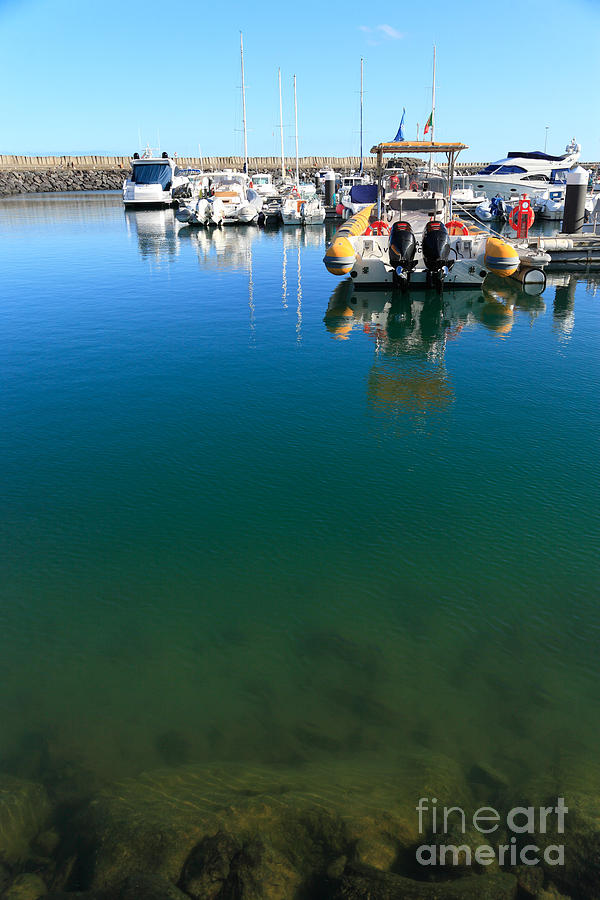 Tranquility At The Marina Photograph  - Tranquility At The Marina Fine Art Print