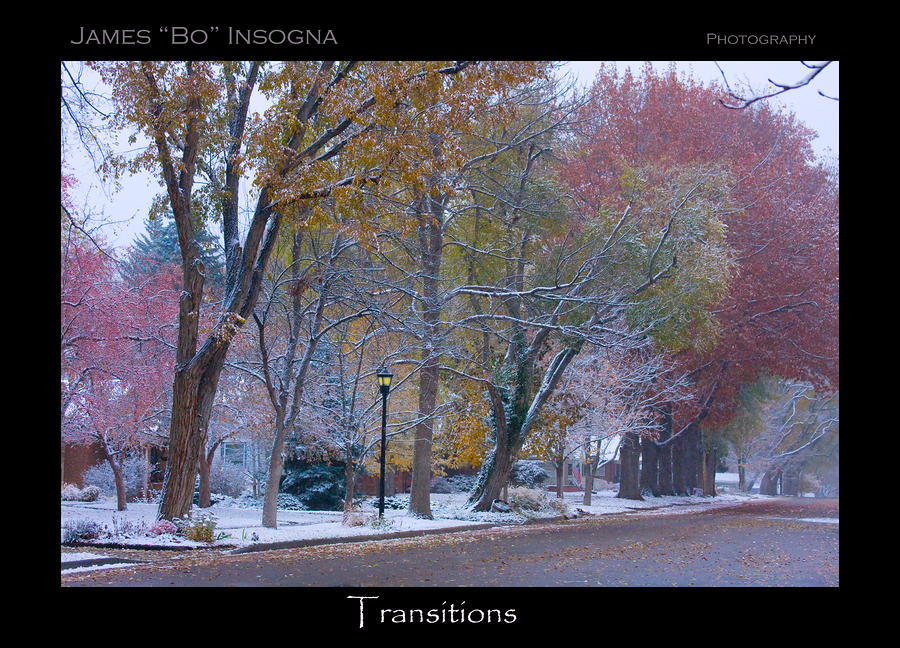 Transitions Autumn To Winter Snow Poster Photograph