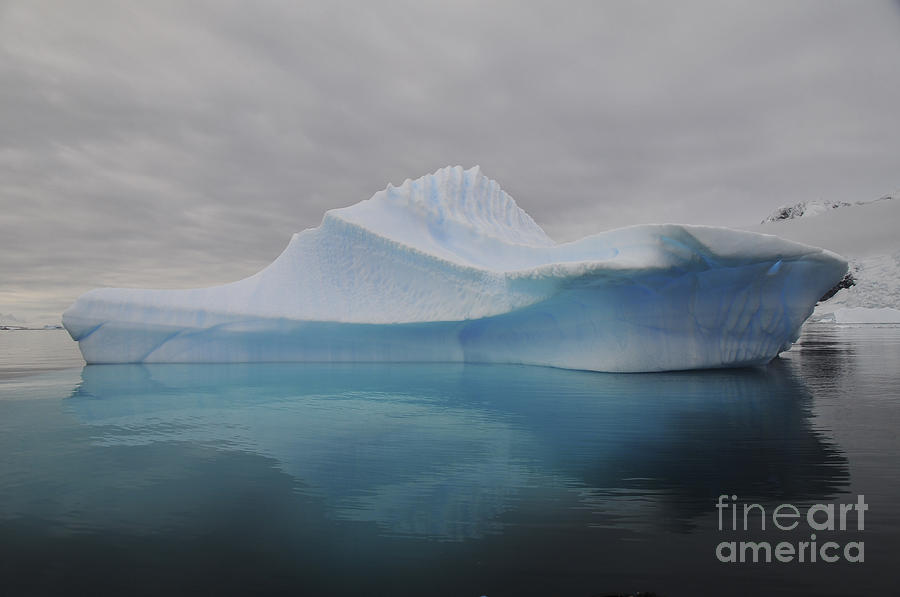 Translucent Blue Iceberg Reflection Photograph  - Translucent Blue Iceberg Reflection Fine Art Print