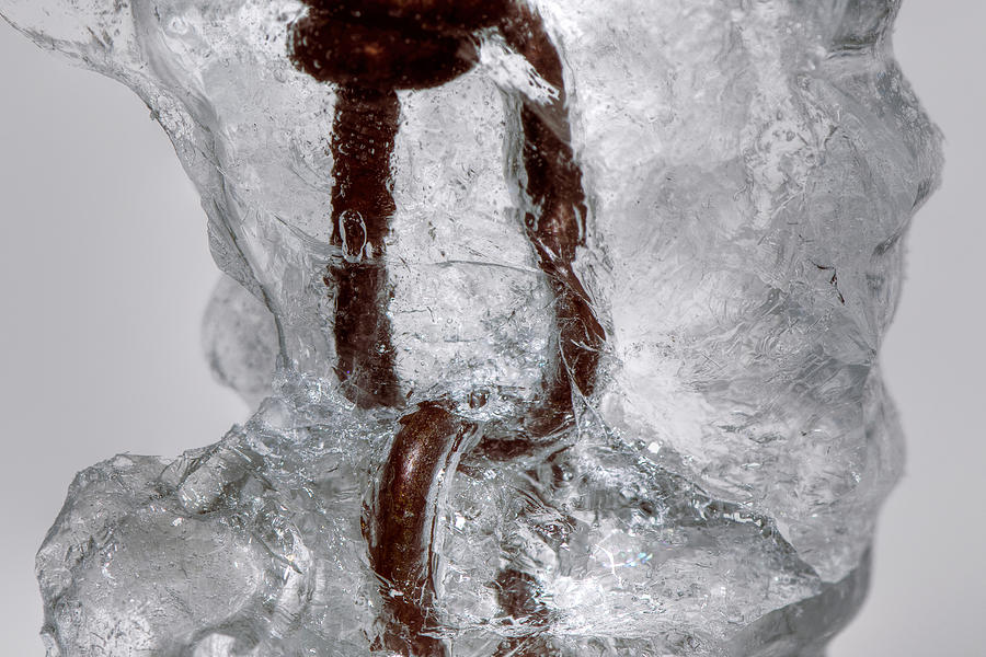 Ice Photograph - Trapped by Lisa Knechtel