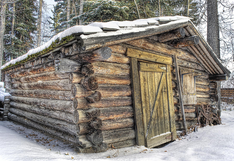 Trappers cabin photograph by thomas payer for Alaska cabin plans