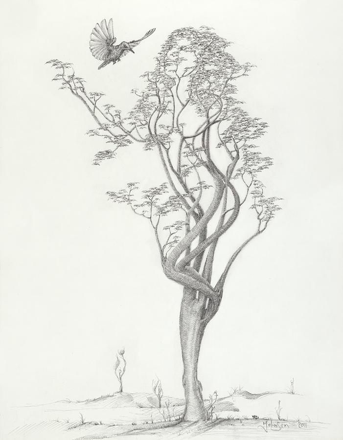 Tree Dancer In Flight Drawing