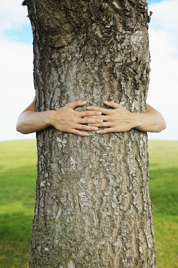 Tree Hugger 1 Photograph  - Tree Hugger 1 Fine Art Print