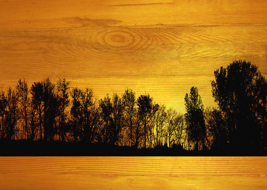 Tree Line On Wood Mixed Media
