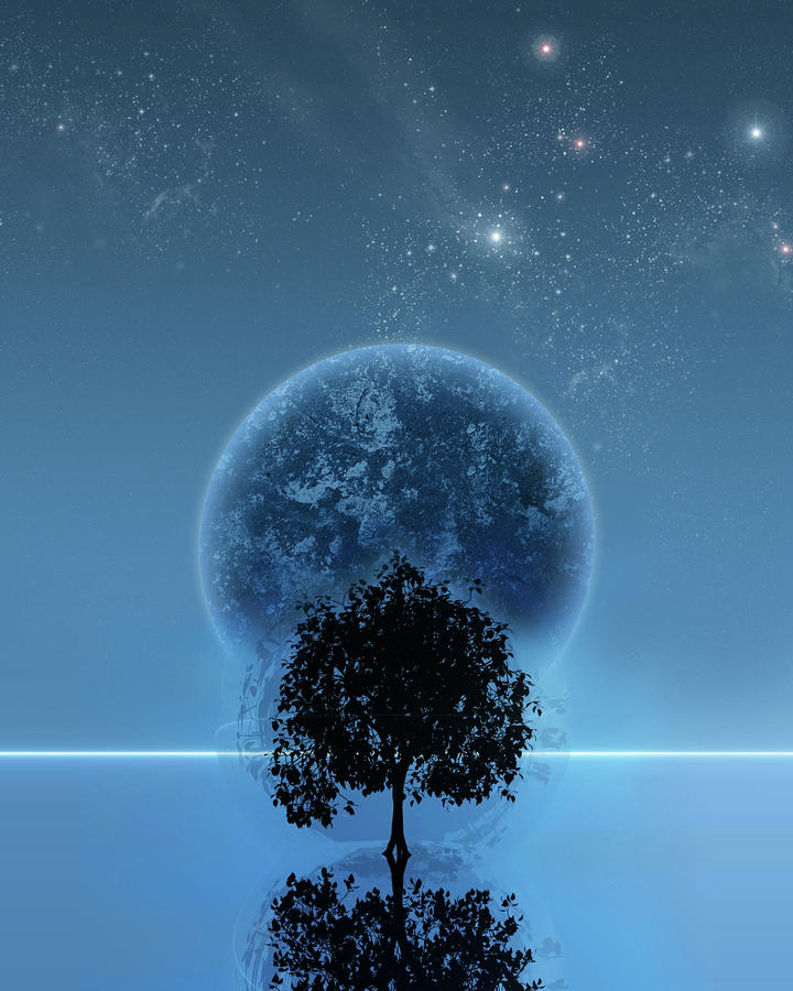 Tree Of Life Digital Art