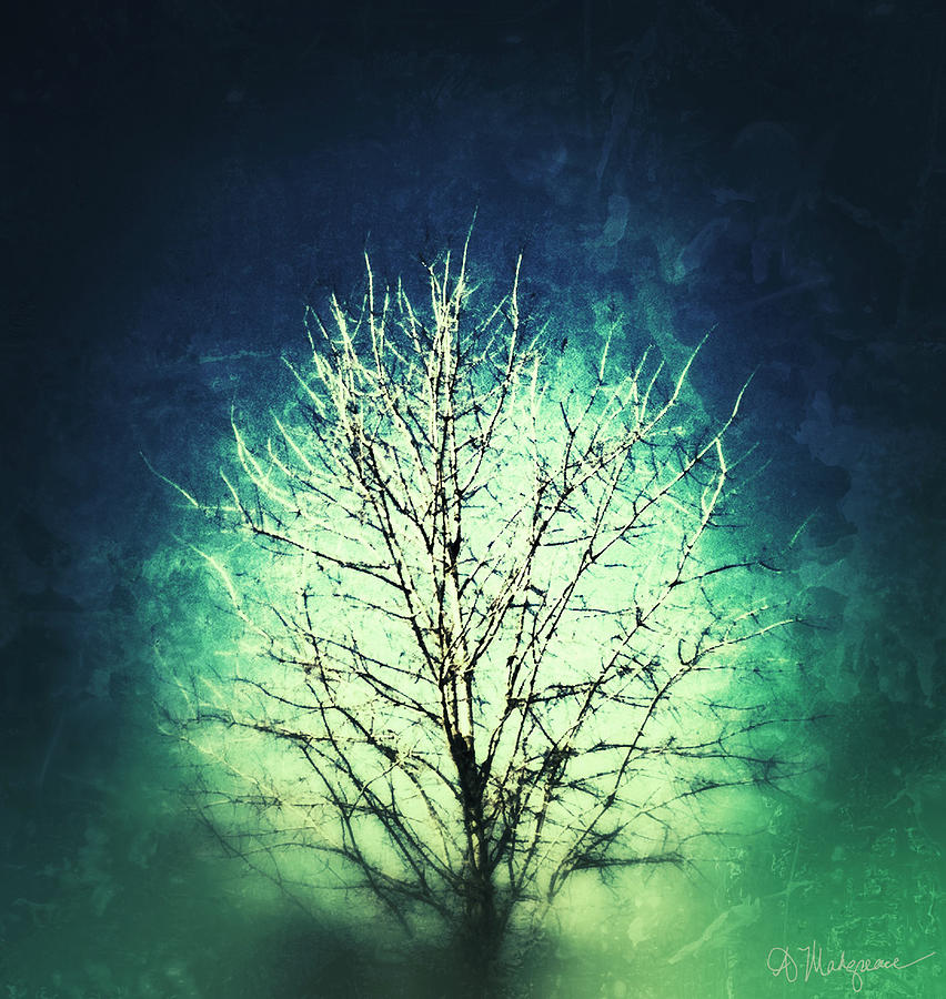 Tree Of Light Digital Art  - Tree Of Light Fine Art Print
