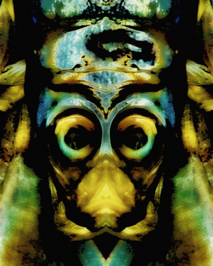 Tribal Mask Photograph  - Tribal Mask Fine Art Print