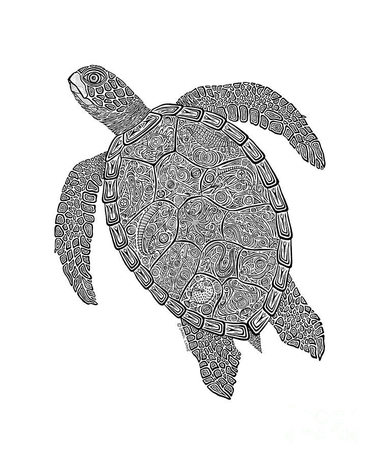 Tribal Turtle II Drawing