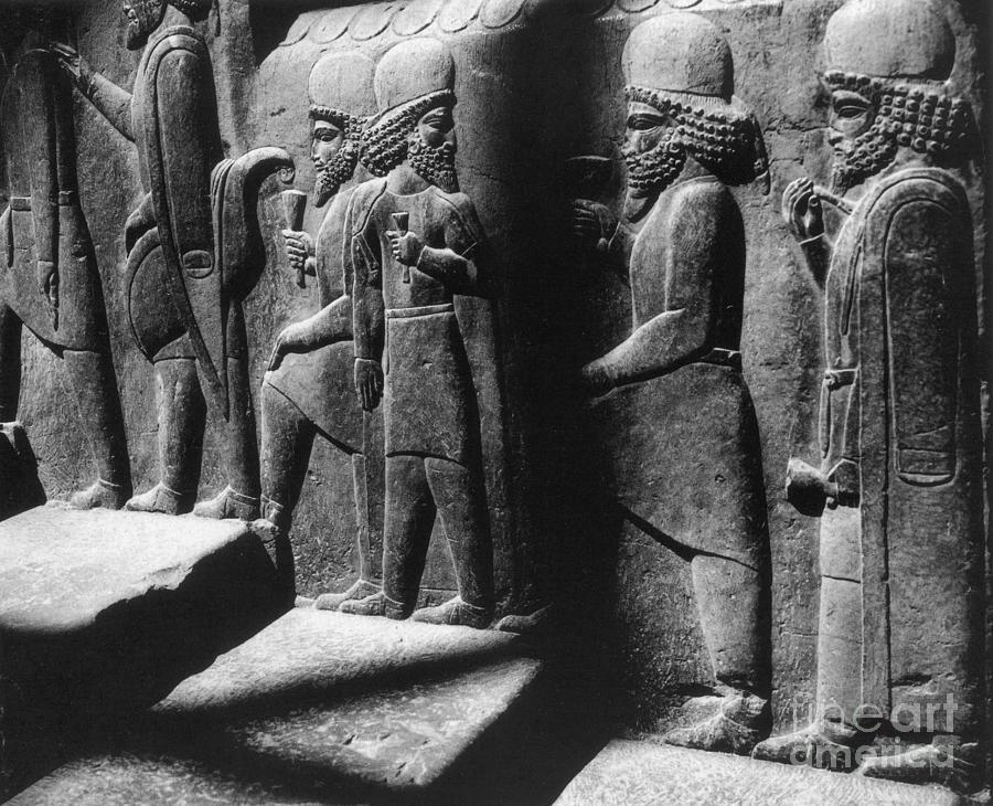 Tribute Bearers, Persepolis, Iran Photograph