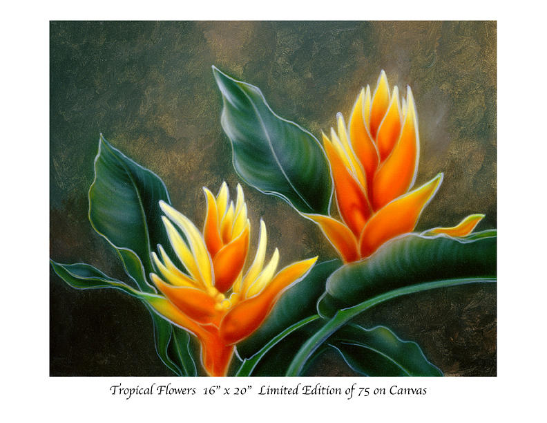 Tropical Flowers by Patrick ORourke